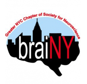 brainy-sfn