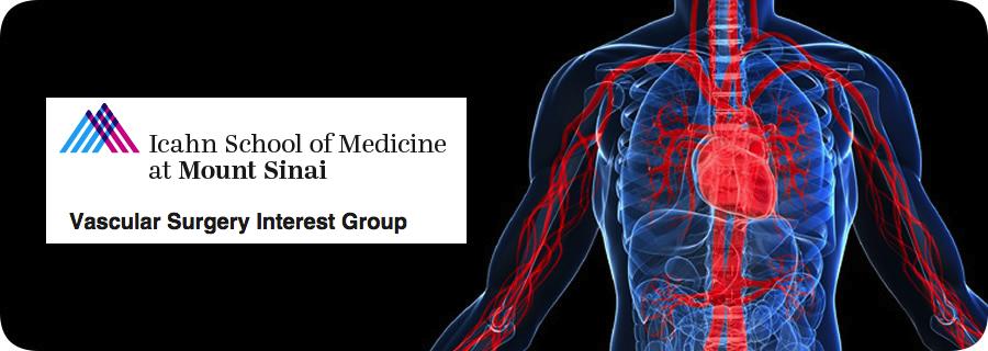 Sinai Vascular Banner 1